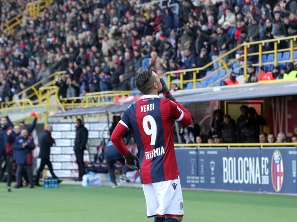 Garde su Dzemaili al Bologna: